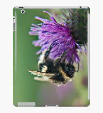 Scruffy Old Bumble Bee macro iPad Case/Skin