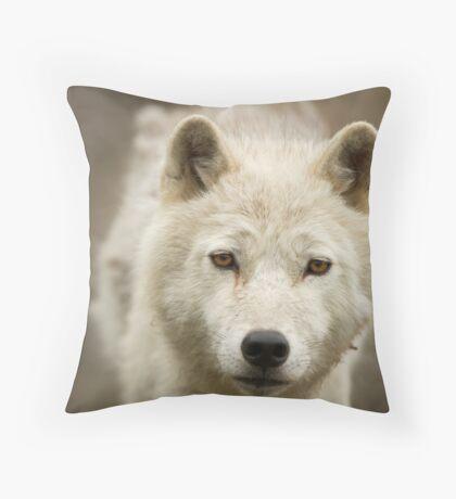 Arctic Stare Throw Pillow