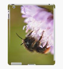 Pollen Covered Bee macro iPad Case/Skin