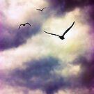 Birds Flying Away by Vicki Field