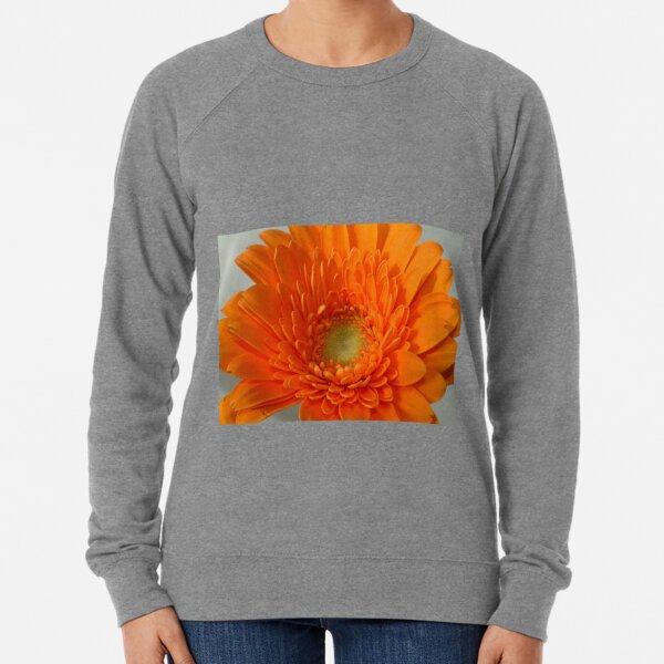 orange gerbera Lightweight Sweatshirt