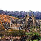 Autumnal Tintern Abbey by missmoneypenny