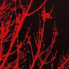 Red by Night by BevsDigitalArt