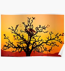 arbre rouge Poster