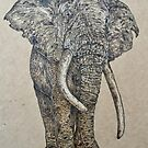 Elephant - stand tall  by CowshedUK