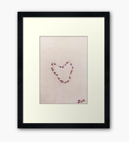 Seeds of love Framed Print