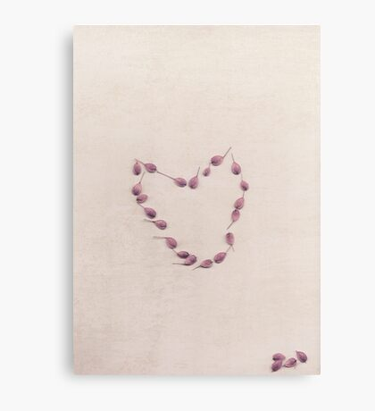 Seeds of love Canvas Print