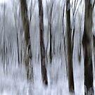 Whispering Trees - Winter by cebrfa