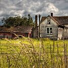 The House by Appel