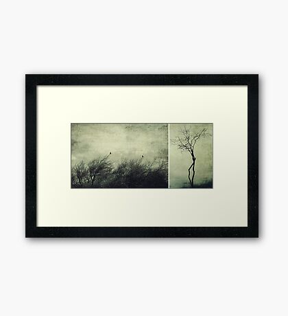 Nature ~ silhouettes Framed Print