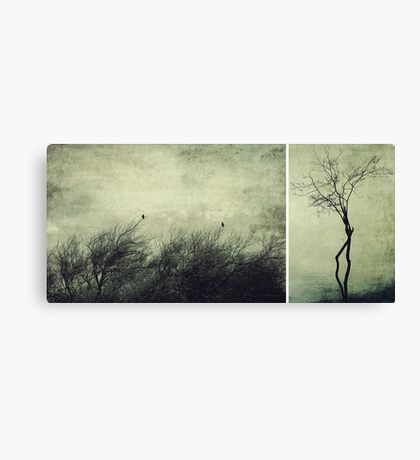 Nature ~ silhouettes Canvas Print