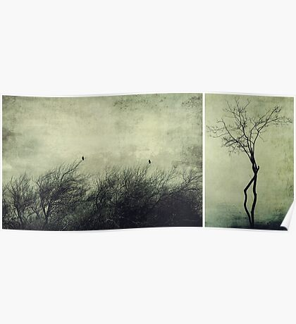 Nature ~ silhouettes Poster