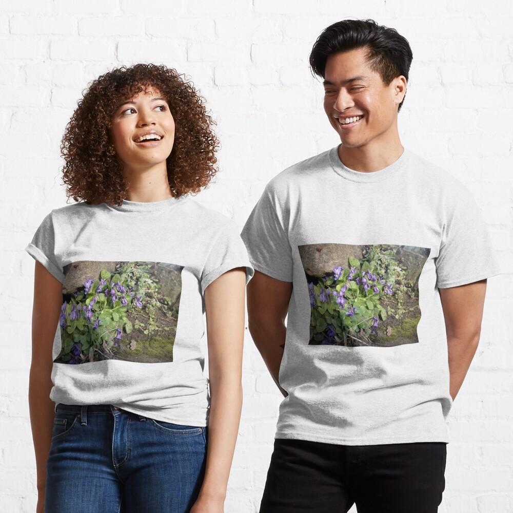 Veilchen am Stein Classic T-Shirt