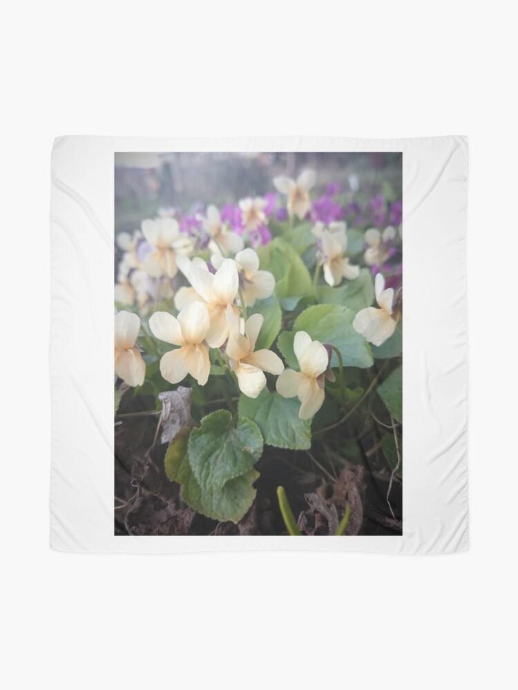 Alternative Ansicht von Veilchen in Blüte Tuch