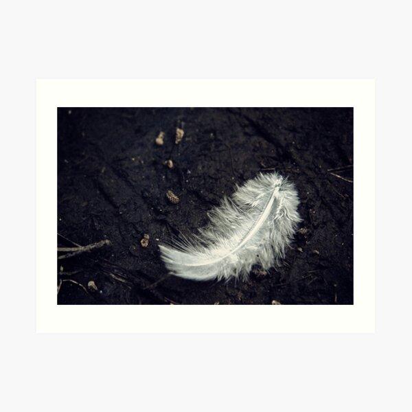 The White Feather Art Print