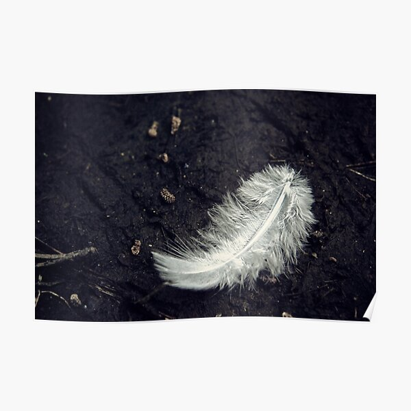The White Feather Poster