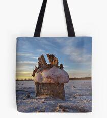 Salty Landscape Tote Bag