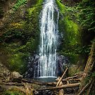Marymere Falls Olympic Peninsula Washington by Jonicool
