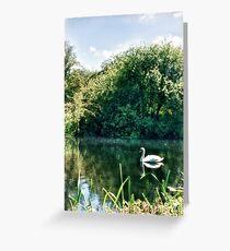 Swan River  Greeting Card