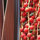 Slices and Berries, Textures in red by Catherine Davis
