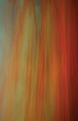 Sunset by Anne Staub