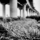 Westgate Bridge 2 by Andrew  Makowiecki