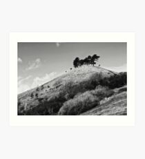 Colmers Hill -  Black and white Art Print