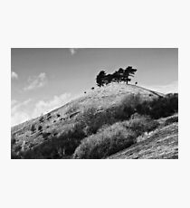 Colmers Hill -  Black and white Photographic Print