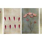 Collage  by Anne Staub