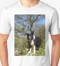 Indy's country. T-Shirt