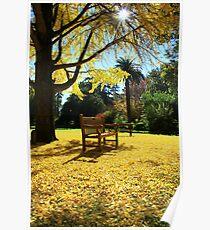'Relax'. Botanic Gardens, Albury. Poster