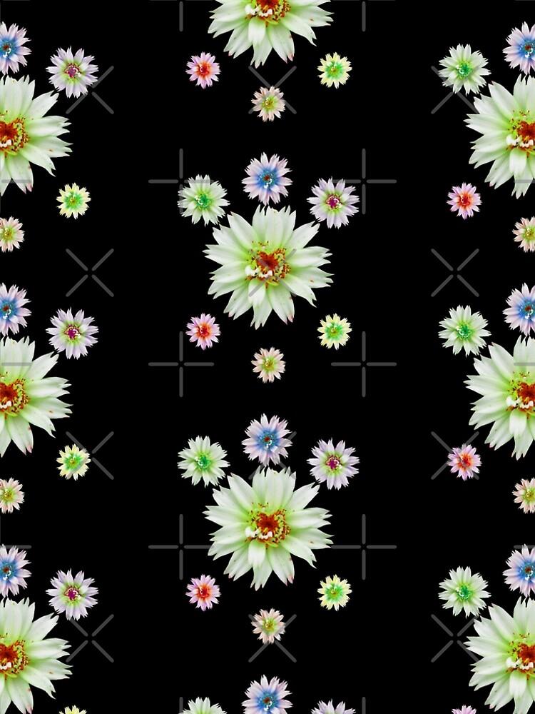zauberhafte bunte Blumen, Blüten, Blume, Natur von rhnaturestyles
