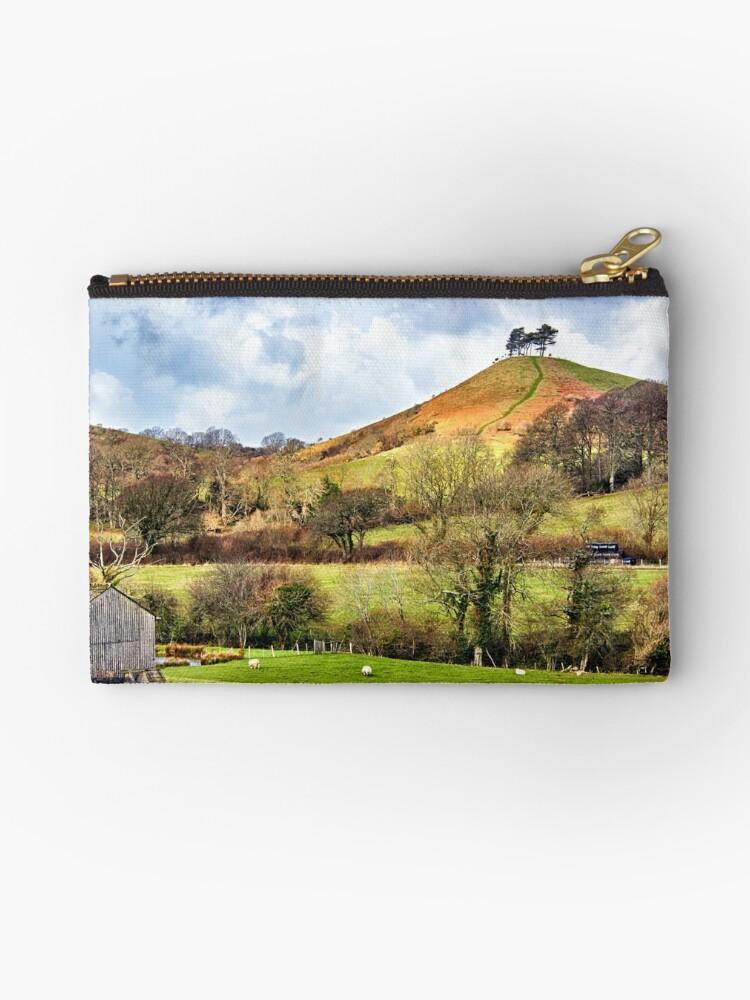 Colmers Hill Landscape by Vicki Field