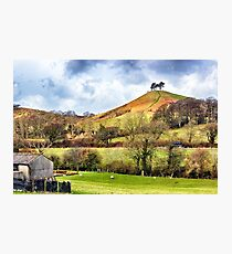 Colmers Hill Landscape Photographic Print