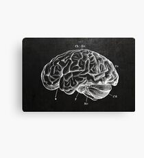 Brain Engraving Canvas Print