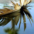 Feather in a Puddle With Palm by paintingsheep
