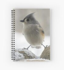 So cold that I feel like I'm caught between a rock and hard place Spiral Notebook
