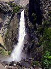 """""""Lower Yosemite Falls"""" by Lynn Bawden"""
