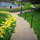 Lets take a walk In Pella by Linda Miller Gesualdo