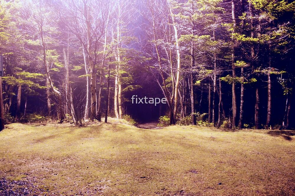 Purplescape by fixtape