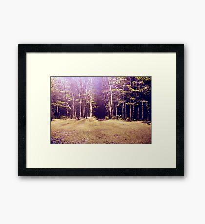 Purplescape Framed Print