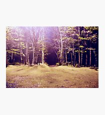 Purplescape Photographic Print