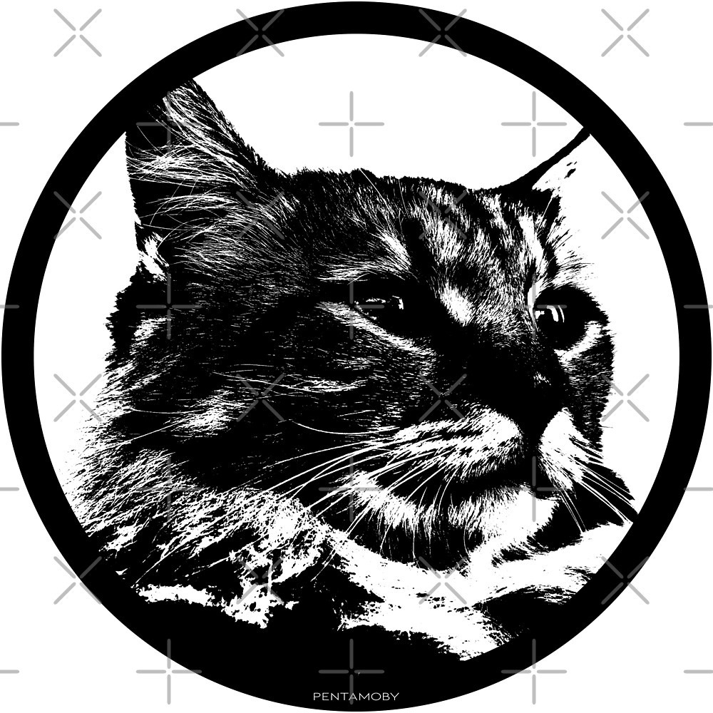 STENCIL KITTY CAT LOVER (b) by Pentamoby