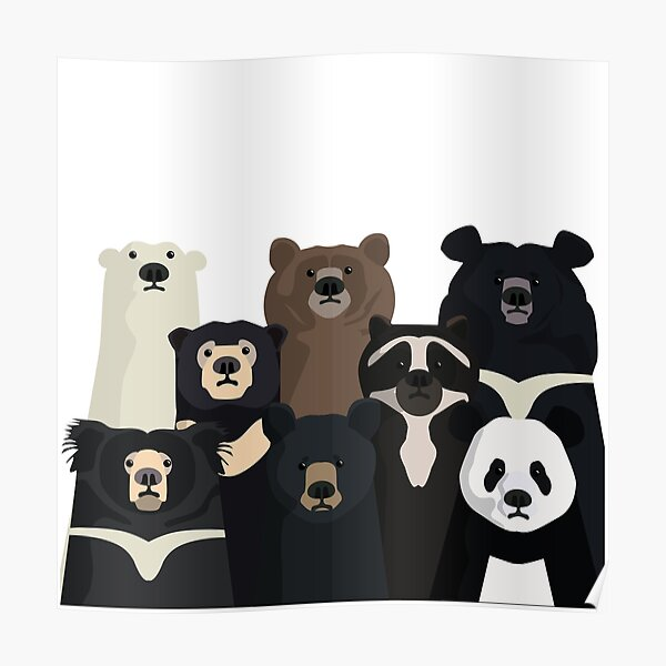 Bears of the world Poster