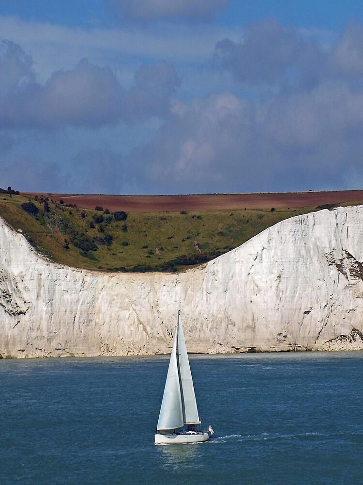 White Cliffs Of Dover by Arizonagirl