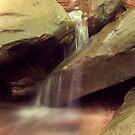 Downstream by Melody Ricketts