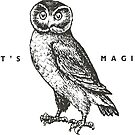 It's Magic by Mary Scarlett LaBerge