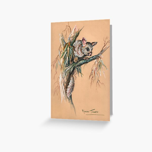 Brushtail Possum 2. Greeting Card