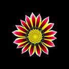 wundervolle Blume in rot und pink von rhnaturestyles
