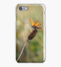 Lady Lycaena Phlaeas iPhone Case/Skin